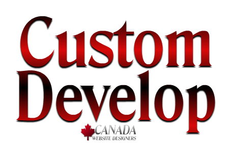 Custom Development 2016